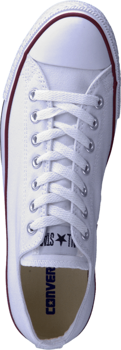 All Star Canvas Low Canvas White