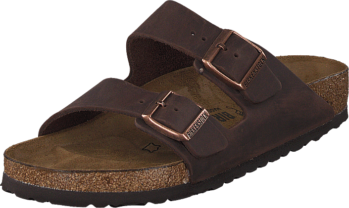 72b7297c161 Buy Birkenstock Arizona Habana Regular Brown brown Shoes Online ...