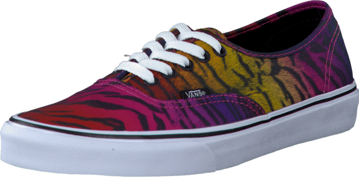 c79a8bf810 Buy Vans U Authentic (Rainbow Tiger) Black blue Shoes Online ...