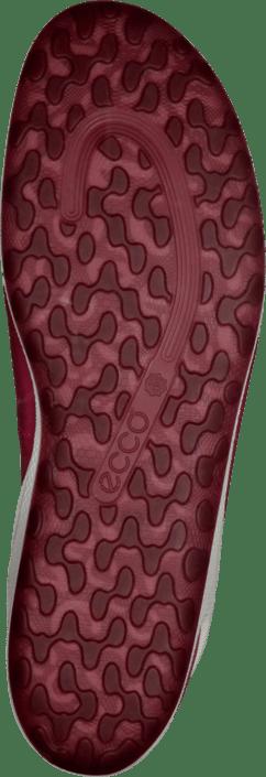 b6c419737d8a Køb Ecco Biom Lite Teaberry Teaberry røde Sko Online