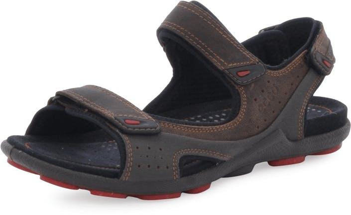 f655a534dd85 Buy Ecco Biom Lite Sandal Cocoa Brown Dark Shadow blue Shoes Online ...