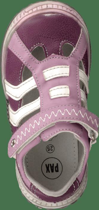 Pax - Svala Lilac/Pink