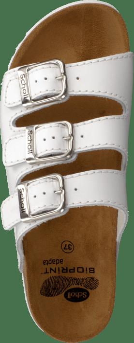 White Rio Tøfler Online Sandaler Wg 21523 Ad Køb Sko 04 Og Scholl Brune Hx4nq5wwIv
