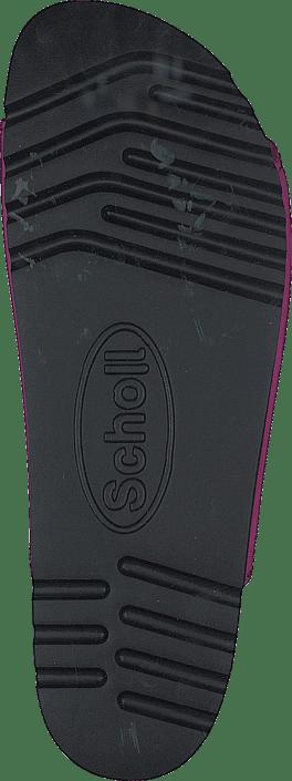Scholl - Rio WG AD Fuxia