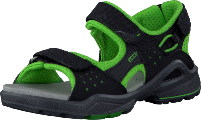 9e01315908f Buy Ecco Biom Sandal Black/Green Flash green Shoes Online | FOOTWAY ...