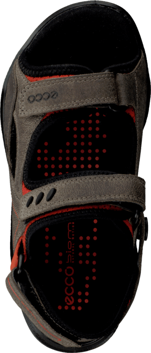 Ecco - Biom Sandal Grey