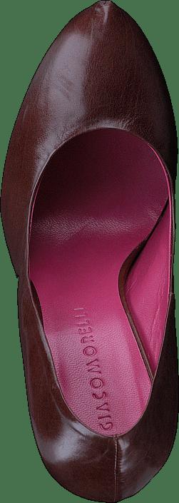 Kjøp Online Giacomorelli 150 Heels Sko Rosa nUBqngv