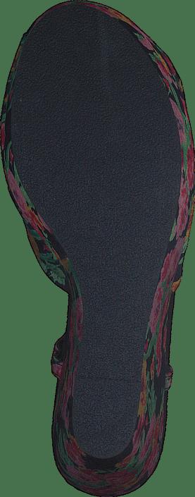 Blowfish - Tindra