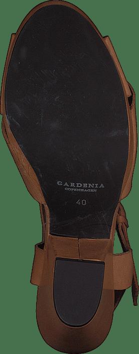 Kjøp Gardenia 1312021 Sko Online