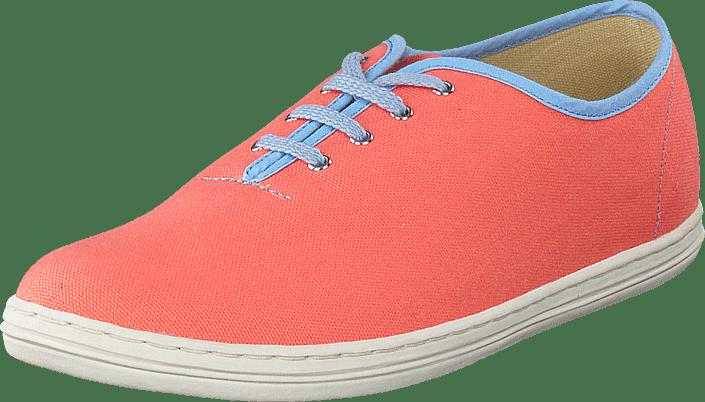 Shoe The Bear - Summer Ride