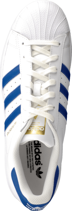 adidas Originals - Superstar Foundation White/Collegiate Royal