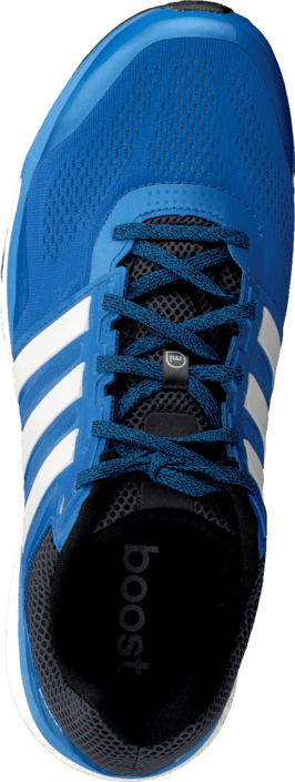 Kup adidas Sport Performance Supernova Glide 7 M Royal/White/Blue Buty Online