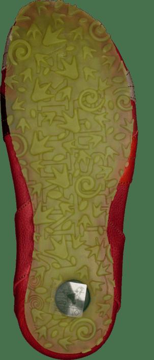 El Naturalista - Ikebana N132 Grosella