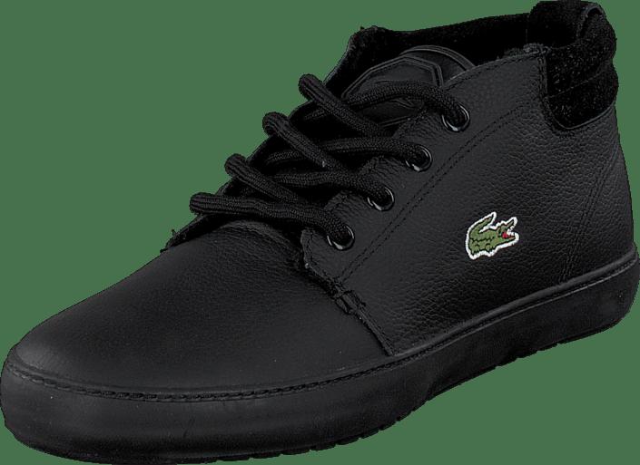 9d52db08d Buy Lacoste Ampthill Terra Put Blk Blk black Shoes Online