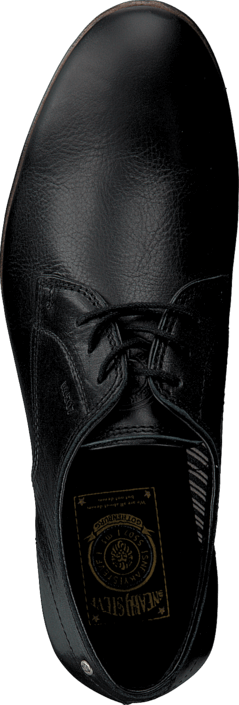 Sneaky Steve - H1501 Markham Low Black