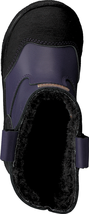 Kavat - Aspa XC Lilac
