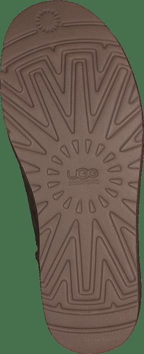 UGG - Cl. Short Dry leaf