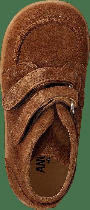 Angulus - 3252-201-1168 Tan