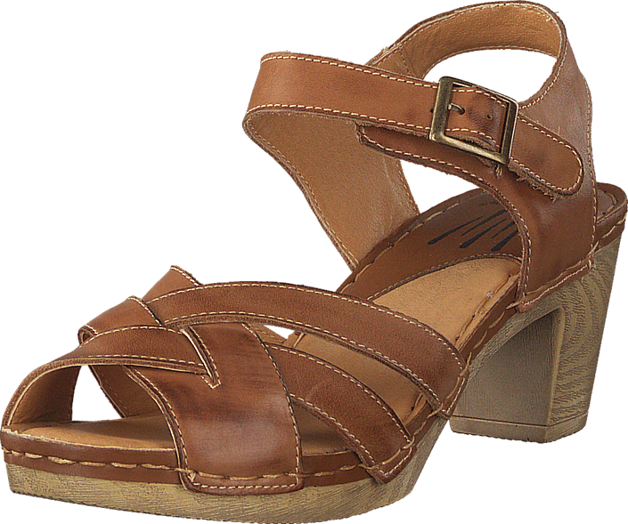 Wildflower - Templer 31 Tan
