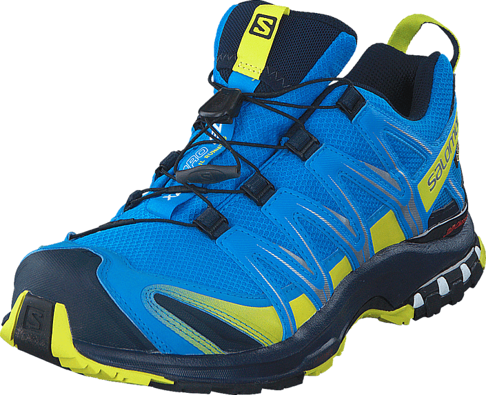 Salomon | XA Pro 3D GTX tursko dame | Løpesko | Blå