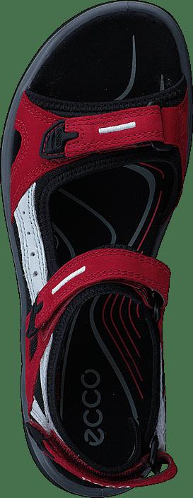 Ecco - 069563 Offroad Chili Red/ Concrete/ Black