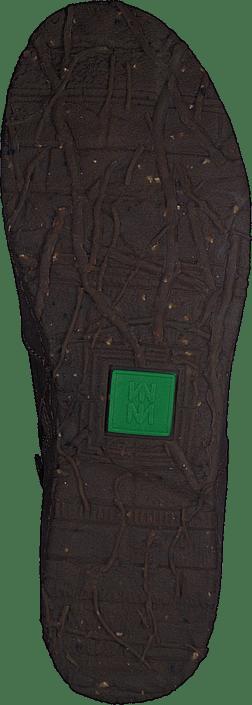 El Naturalista - N919 Angkor Plume
