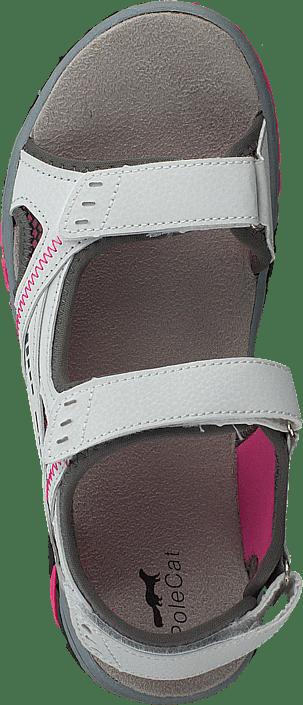 Polecat - 413-4621 White