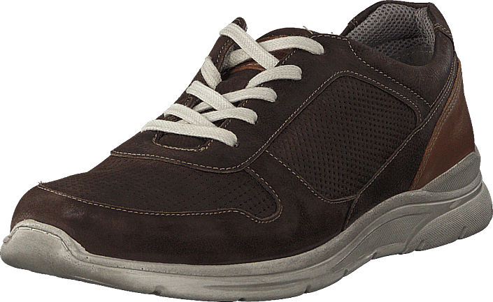 Senator - 451-4203 Comfort Sock Dark Brown