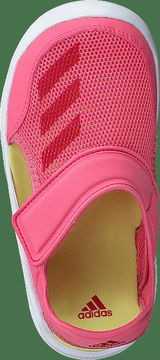 adidas Sport Performance - Fortaswim I ChalkPink S18/Vivid Berry/Wht