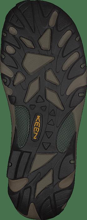 Arroyo II Slate Black / Bronze Green