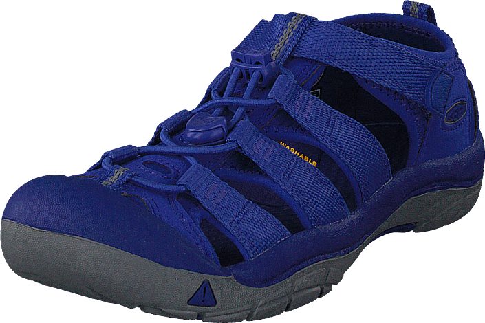 98edf449e77a Buy Keen Newport H2 Jr Surf The Web blue Shoes Online