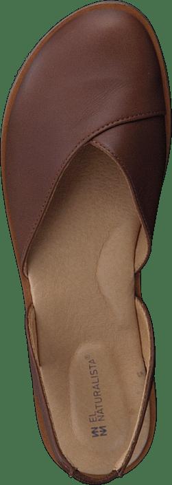 Tulip Cuero