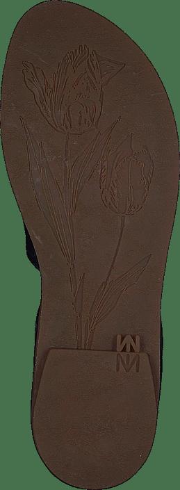 El Naturalista - Tulip Ocean