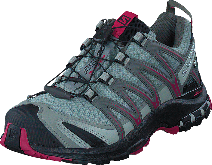 Salomon - Xa Pro 3D GTX® W Shadow/Black/Sangria