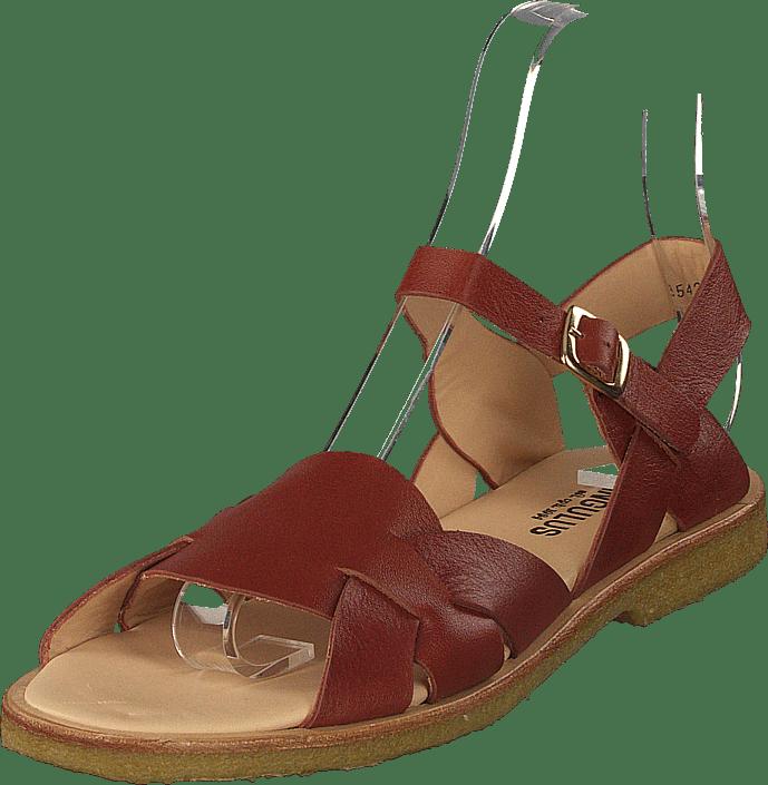 395482e3c7ae Køb Angulus Sandal With Buckle Rust brune Sko Online