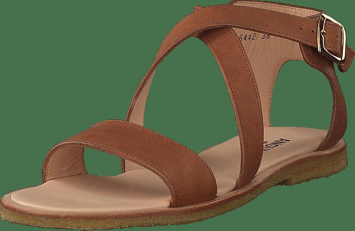 Kjøp Sko Tan Sandal Buckle Brune With Angulus Online Sandals rUwzqIYr