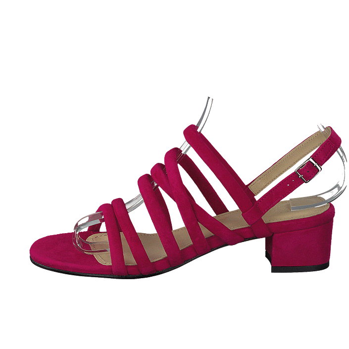 Gardenia Shoes Online