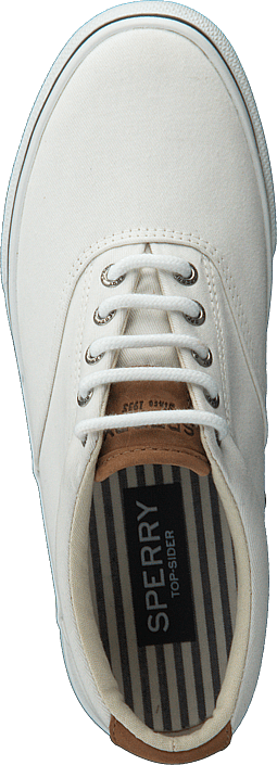 Sperry Topsider - Striper LL CVO Washed White