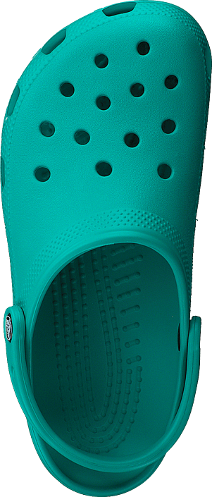 Classic Tropical Teal