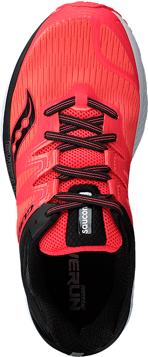 Guide Iso Red/black