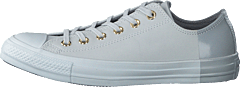 Chuck Taylor All Star Pure Platinum/wolf Grey