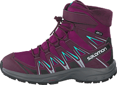 Xa Pro 3d Winter Ts Cswp J Darkpurple/potentpurple/atlant