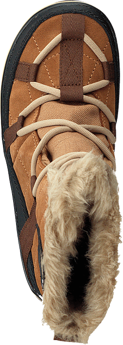 Glacy Explorer Shortie 286 Elk