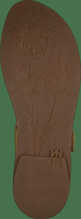 El Naturalista - Tulip Ibón Mustard