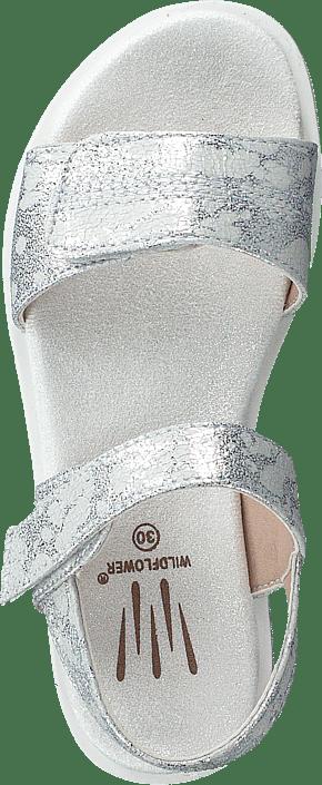 Desi Silver