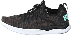 Ignite Flash Evoknit Sr Wn's Puma Black-charcoal Gray-aqua