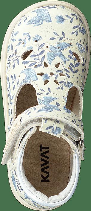 Ängskär Xc Blue Flower