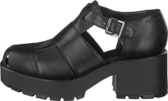 Dioon 4747-001-20 Black