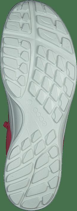 Sportsko Terracruise 07 Og Sneakers 60165 Ecco Teaberry Røde Sko Køb Online wZH8q45f
