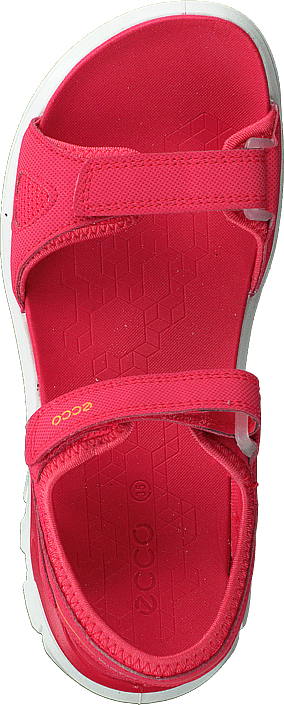 b7b1d46c4c80 Køb Ecco Biom Raft Teaberry røde Sko Online